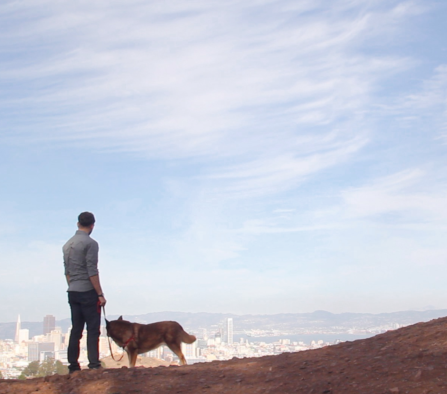 Man standing on hill with dog overlooking city