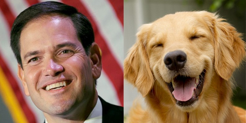 Marco Rubio and dog look alike