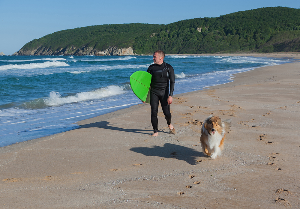 Surfer and dog walking on Hawaiian beach
