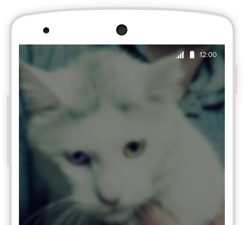 Phone with cat background