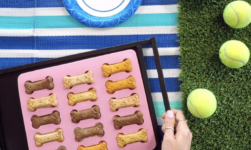 Scarf'd Pet Recipes: Frozen Bone Broth Dog Treats | Figo Pet Insurance