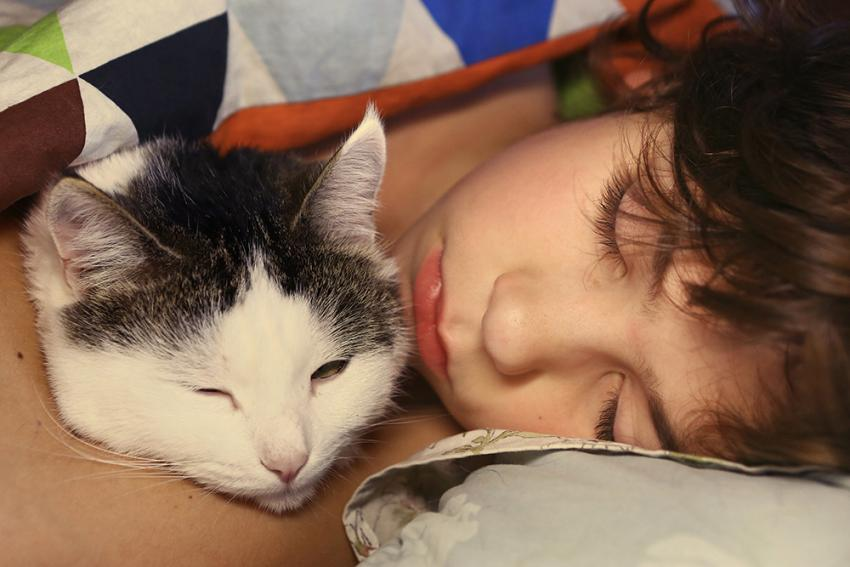 Child hugging cat while sleeping
