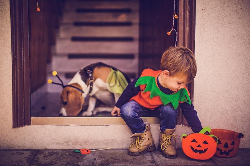 Halloween pet safety: child and dog dressed in costumes