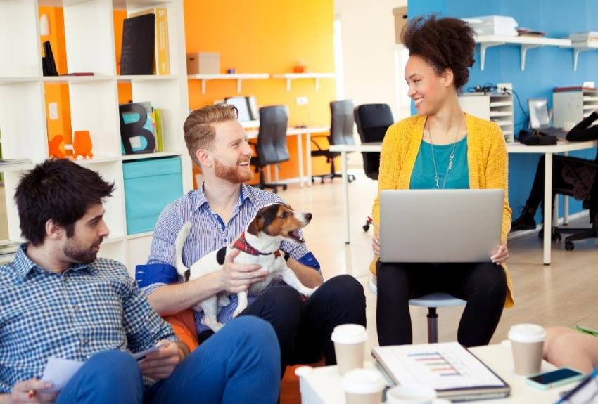 people in office with dog