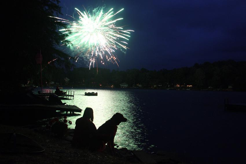 Fireworks And Pet Anxiety Keep Scared Dogs Indoors On