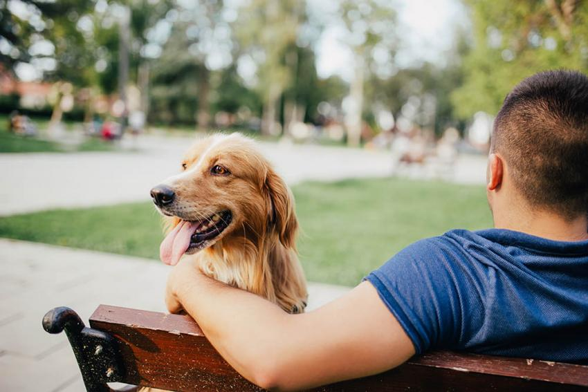 Guy with pet on bench