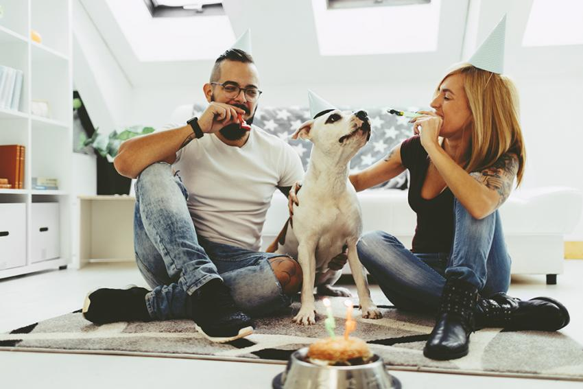 Pet parents celebrating their dog on National Love Your Pet Day