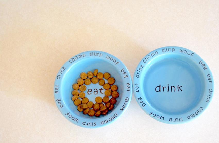Pet water and food dishes