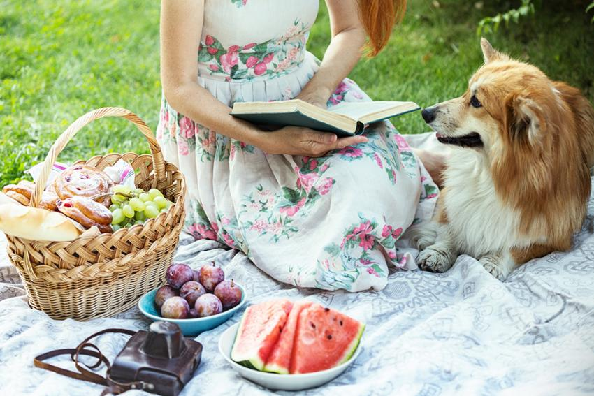 Woman having a picnic with dog