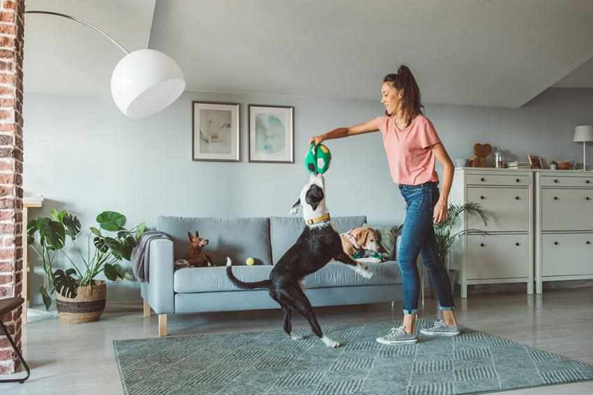 Woman playing game with dog