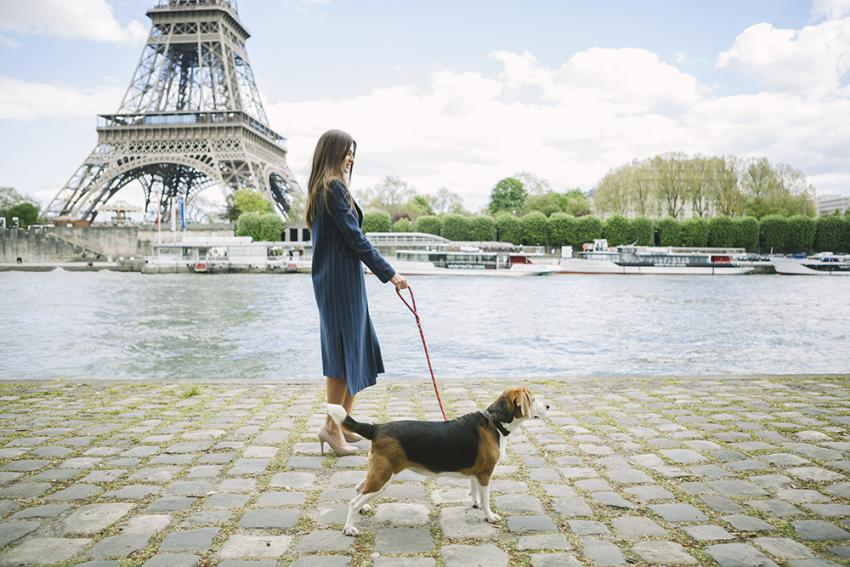 Woman with dog walking in Paris