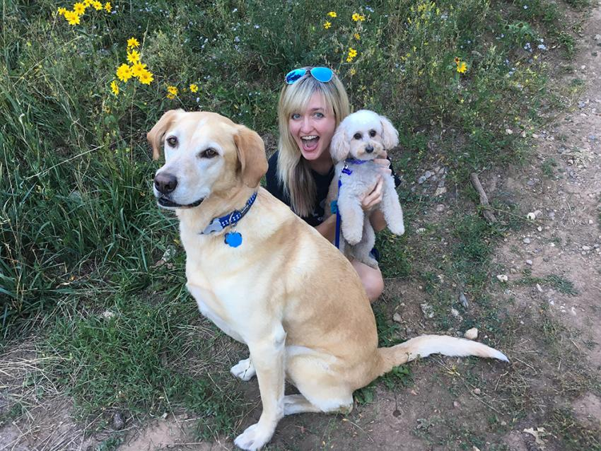 Woman with golden retriever and another puppy