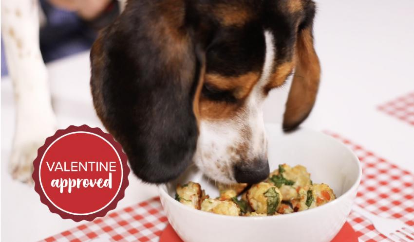 Scarf'd: Chicken Meatballs—A Valentine's meal for your dog