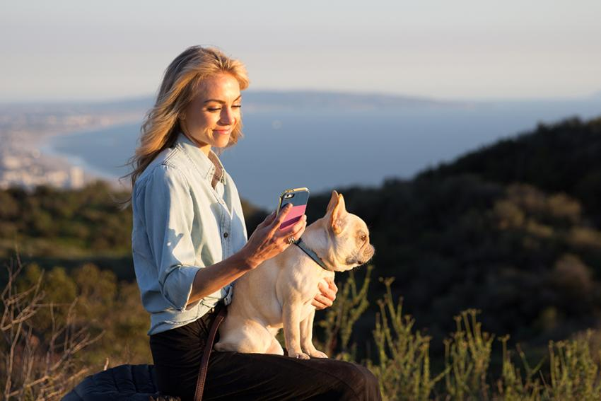 Figo Pet Cloud: Anywhere access to pet medical records, claims, pet friendly locations, and more.