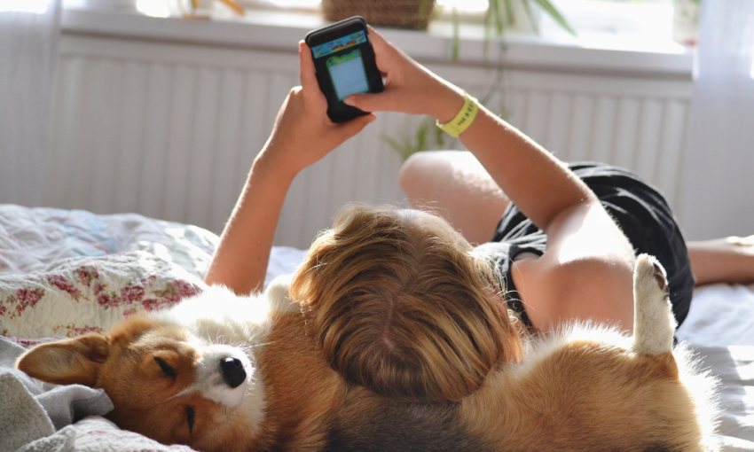 Dog and owner laying on back looking at phone