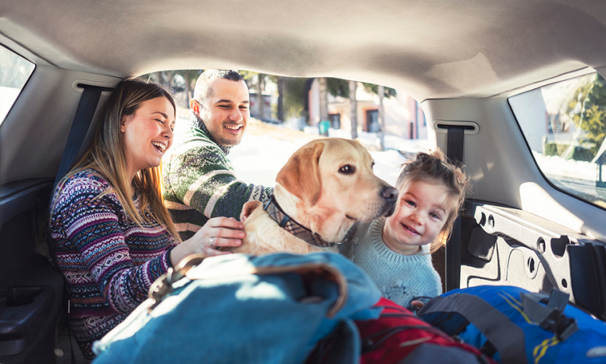 family in back of car with yellow lab