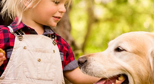 dog next to child with dog treat in hand
