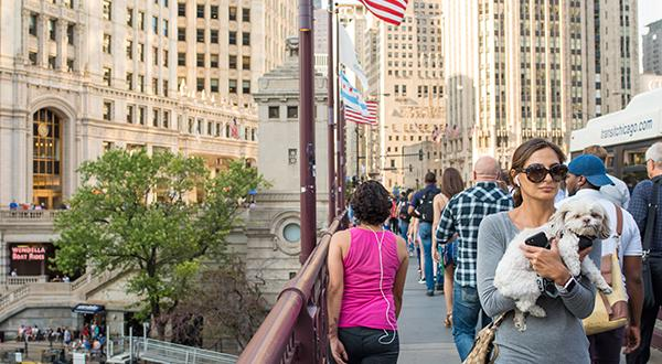 Chicago, dog friendly city: woman carrying dog near Chicago River