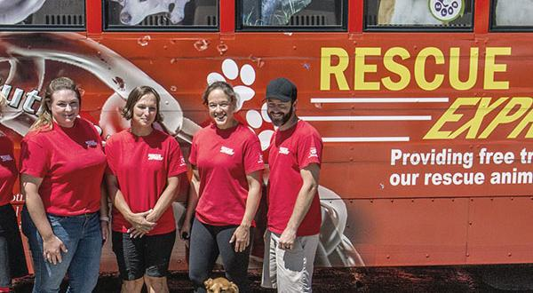 Pet Professionals: Interview Karen Vazquez of Rescue Express | Figo Pet Insurance