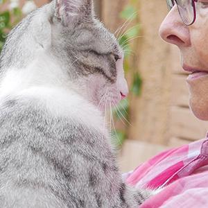 Pet guardianship: Woman sharing a moment with her beloved cat | @cobalt via Twenty20