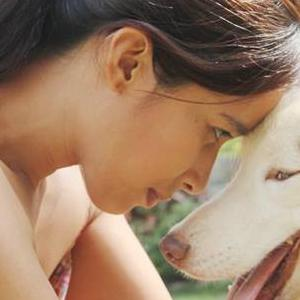 Five Reasons Dog Ownership Is Great For Your Health