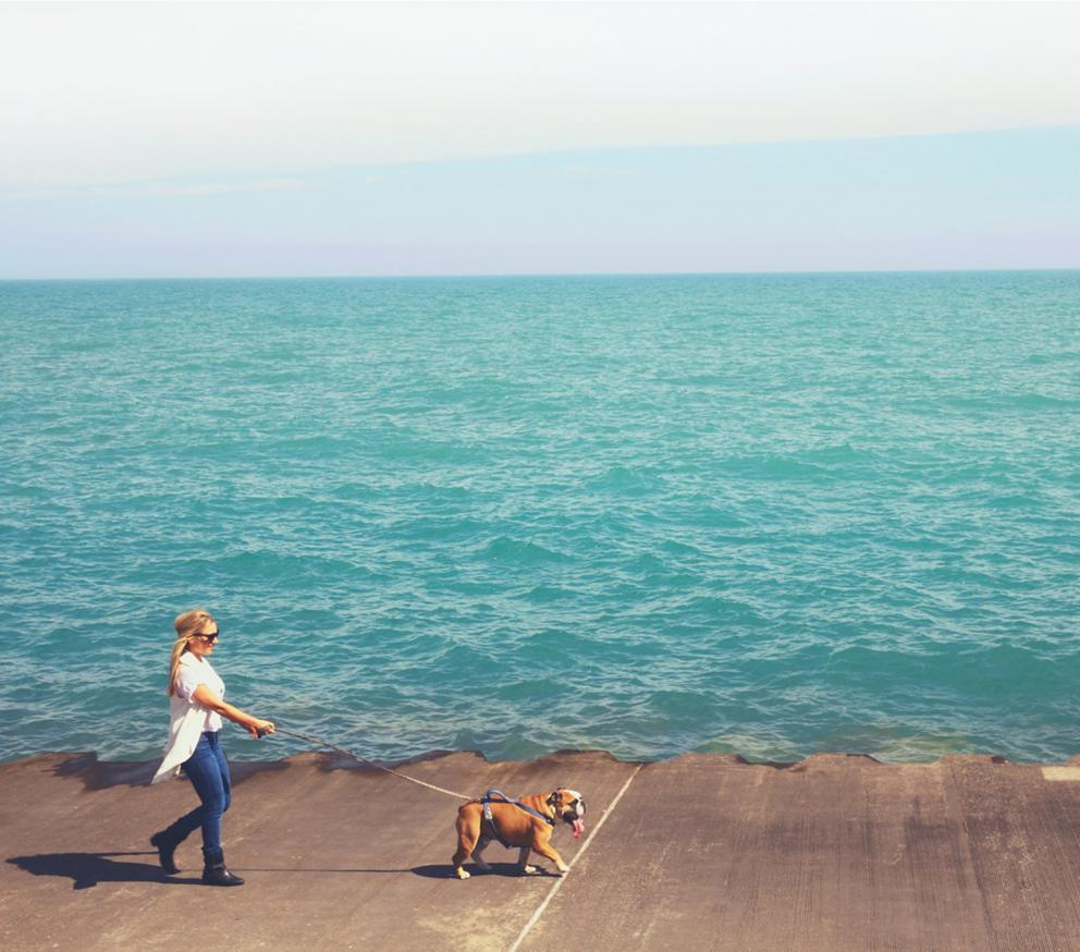Woman walking bull dog along ocean